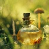 1414067941_naturalnyy-shampun